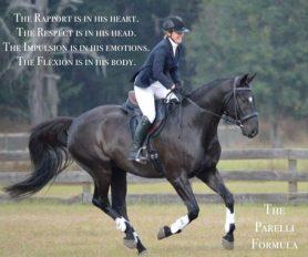 kurs_anlehnung_horsemanshipcenter
