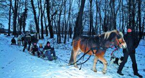 MA¦â-ñrkischeHA¦â-Âfe_Winter5