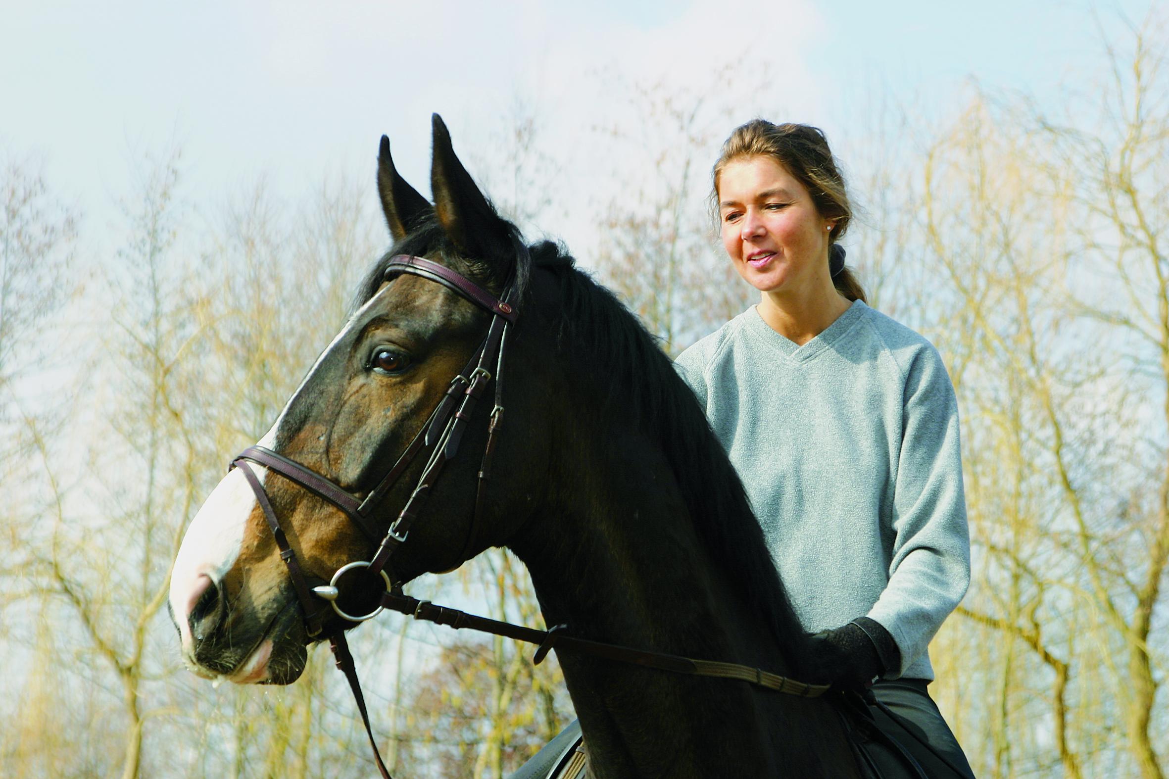 das eigene pferd – traum oder albtraum? - pferdeland brandenburg