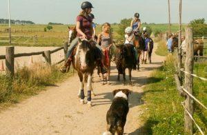 Pferd & Familie